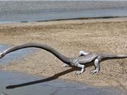 Tìm thấy hóa thạch quái vật biển sống trước khủng long