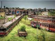 Khám phá 5 địa điểm bỏ hoang rùng rợn trên thế giới