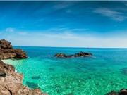 Công bố thành lập khu bảo tồn biển Lý Sơn