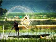 Chùm ảnh ấn tượng về đồng bằng sông Cửu Long