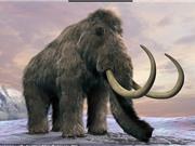 Tràn đầy cơ hội hồi sinh voi ma mút trong 2 năm tới