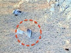 Bất ngờ trước hình ảnh giống y lưỡi xẻng trên sao Hỏa