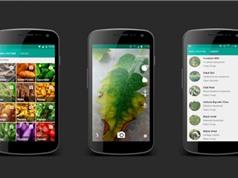Clip: Ứng dụng trên smartphone giúp phát hiện bệnh của cây trồng