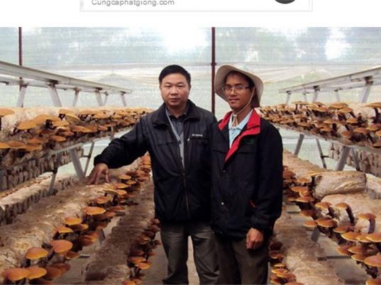 Lâm Đồng: Chuyển giao thành công công nghệ trồng nấm cao cấp