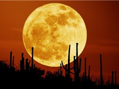 Ấn Độ sẽ đáp ứng mọi nhu cầu năng lượng từ tài nguyên trên Mặt Trăng