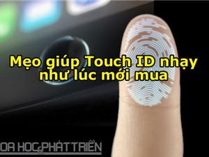 5 cách giúp Touch ID nhạy như lúc ban đầu