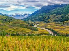 Lên Sapa - nhớ ghé thăm thung lũng Mường Hoa