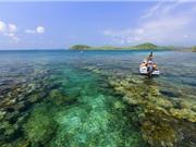 """Chiêm ngưỡng vẻ đẹp của """"đảo Robison giữa đại dương"""" tại Việt Nam"""