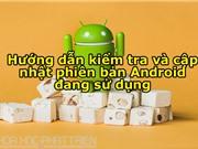 Hướng dẫn kiểm tra, cập nhật phiên bản Android mới