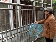 Vườn thú Trung Quốc cho các loài động vật ăn thịt nhau