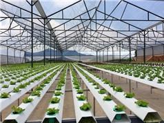 Gia Lai xây dựng 5 khu nông nghiệp ứng dụng công nghệ cao