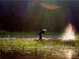 """Khung cảnh thơ mộng của """"vịnh không sóng"""" ở Việt Nam"""