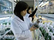 Chế phẩm enzym Việt khó bán vì đắt hơn của tây