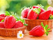Những thức uống giúp giải độc, ngăn ngừa huyết áp cao và tiểu đường