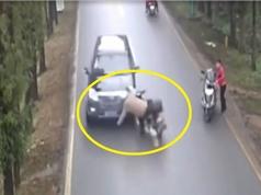 Clip: Xe máy mất lái, lao đầu vào ô tô