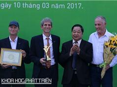 Việt Nam chủ động công nghệ phôi giống bò sữa cao sản