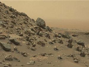 Con người có thể trồng khoai tây trên Sao Hỏa