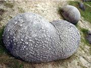 Kỳ lạ: Loại đá tự lớn lên, phình to
