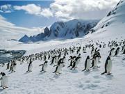 10 quốc gia và vùng lãnh thổ lạnh nhất thế giới