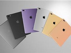 iPad Pro có 4 phiên bản màn hình, 4 màu sắc