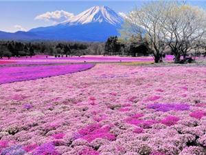Đảo Hokkaido - hòn ngọc lục bảo của Nhật Bản