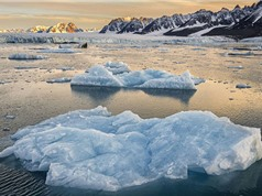 """""""Mẹ Tự nhiên"""" xóa sổ một nửa băng Bắc Cực"""