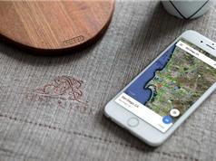 Hướng dẫn xóa lịch sử tìm kiếm Google Maps trên thiết bị iOS
