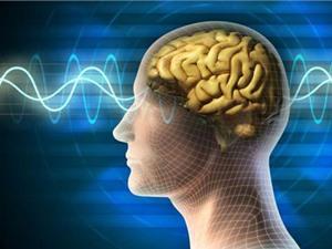 Dùng điện để... tăng trí nhớ
