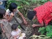 """""""Khám phá"""" bí quyết sống thọ của bộ tộc vùng Amazon"""
