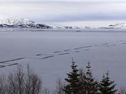 Đường zigzag kỳ lạ trên mặt hồ băng lớn nhất Iceland