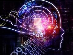 Tạo ra thành công trí tuệ nhân tạo giống con người