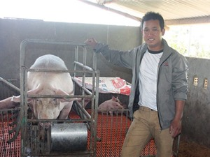 Lâm Đồng: Chàng trai trẻ vượt khó làm giàu