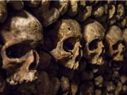 Ai là người ít sợ chết nhất theo khoa học?