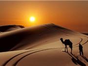 10 sa mạc có diện tích lớn nhất thế giới