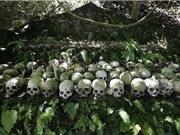 """""""Rợn người"""" trước phong tục mai táng người chết ở Bali"""