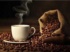 10 loại cà phê ngon nhất thế giới năm 2017