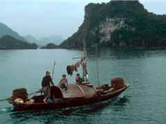 Chùm ảnh cực hiếm về Quảng Ninh năm 1994 - 1995