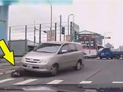 """CLIP HOT NHẤT TRONG NGÀY: Bị ô tô cán ngang người, trăn """"ác chiến"""" với rắn hổ mang chúa"""
