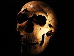 Người tiền sử ăn thịt người vì sao?
