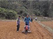 Lạng Sơn kiểm tra tiến độ đề tài nghiên cứu chế tạo máy gieo hạt