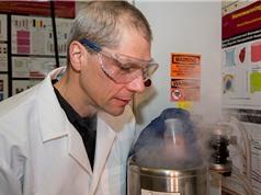Giải quyết vấn đề thiếu tạng ghép bằng công nghệ nano