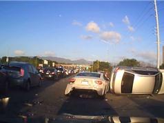 CLIP HOT NHẤT TRONG NGÀY: Tai nạn kinh hoàng trên đường cao tốc, báo săn lừa sư tử