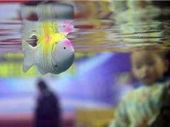 Trung Quốc: Chế tạo cá robot thân mềm đo độ mặn nước biển