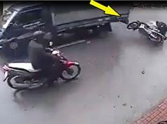 CLIP HOT NHẤT TRONG NGÀY: Suýt chết vì cái áo mưa, rồng Komodo giết trâu con