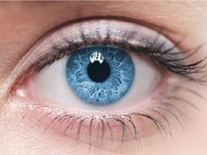 Clip: Bài tập Yoga đơn giản cho đôi mắt sáng khỏe