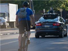 Ôtô thông minh không cứu được xe đạp ngốc nghếch