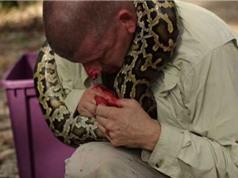 Clip: Suýt chết vì bị trăn khổng lồ cắn vào mặt