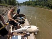 Clip: Dùng cung tên săn được cá sấu hỏa tiễn nặng gần 100kg