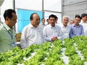 Bình Phước quy hoạch 1.000 ha nông nghiệp công nghệ cao