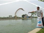 Tuyệt chiêu nuôi cá sạch, lớn nhanh